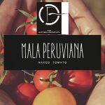 fs-banner-mala_peruviana